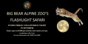 Flashlight Safari @ Big Bear Alpine Zoo | Big Bear | California | United States